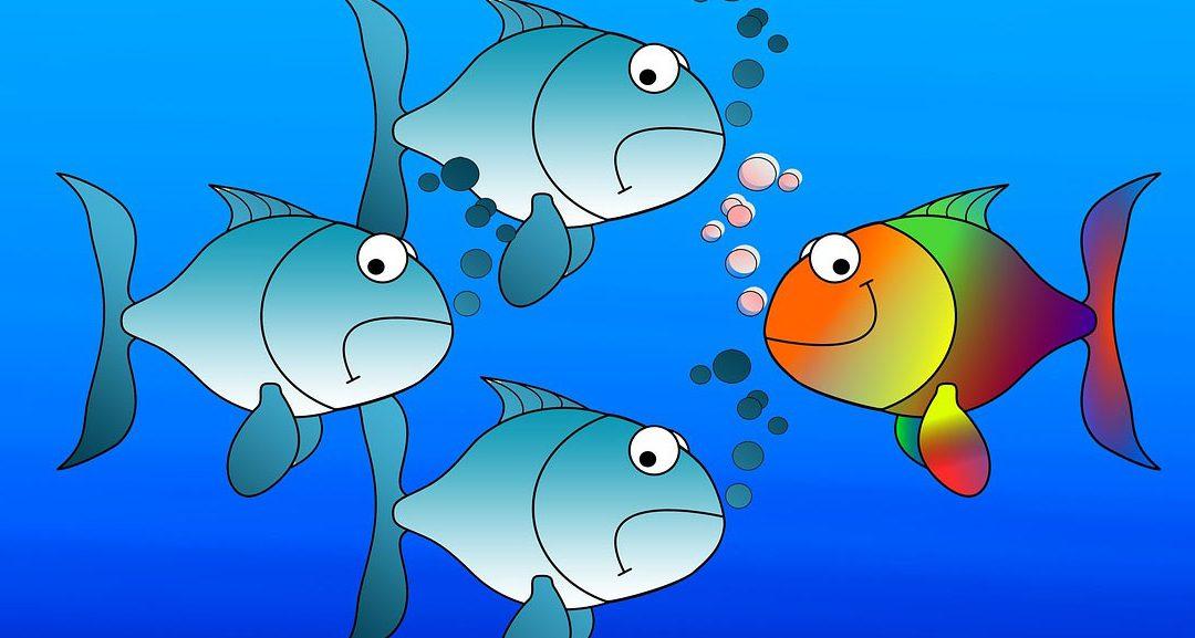 El juicio crítico del salmón. La mejor brújula para nuestros hijos e hijas